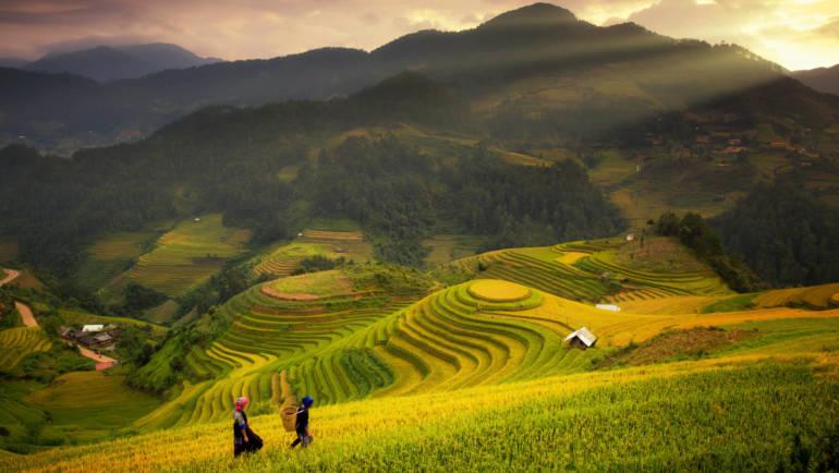 thailand-reisfelder-wellness.jpg
